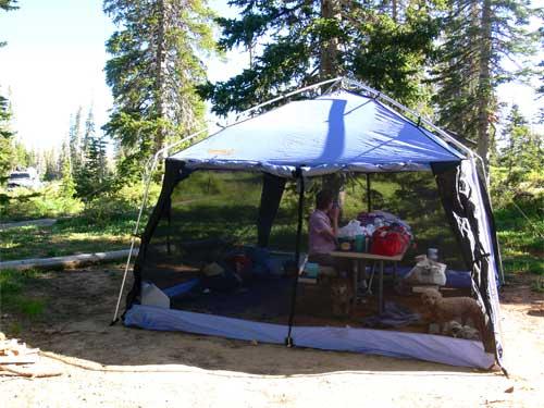 camp-cb2-p1040238.jpg