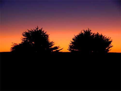 sunsetp1050405.jpg